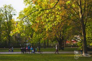 Drzewa, trawnik i mieszkańcy w Parku Dreszera