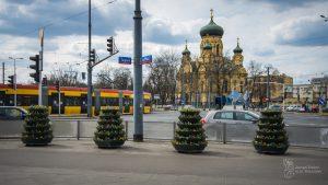 Konstrukcje kwiatowe z bratkami i stokrotkami na rogu ul. Solidarności i Targowej