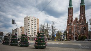 Bratki i stokrotki w konstrukcjach kwiatowych w Parku Praskim - naprzeciwko widać Kościół św. Floriana