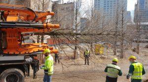 Ciężarówka z przesadzarką drzew wywozi drzewo z Placu Europejskiego