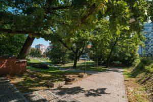 Schody i alejka w Parku Kazimierzowskim