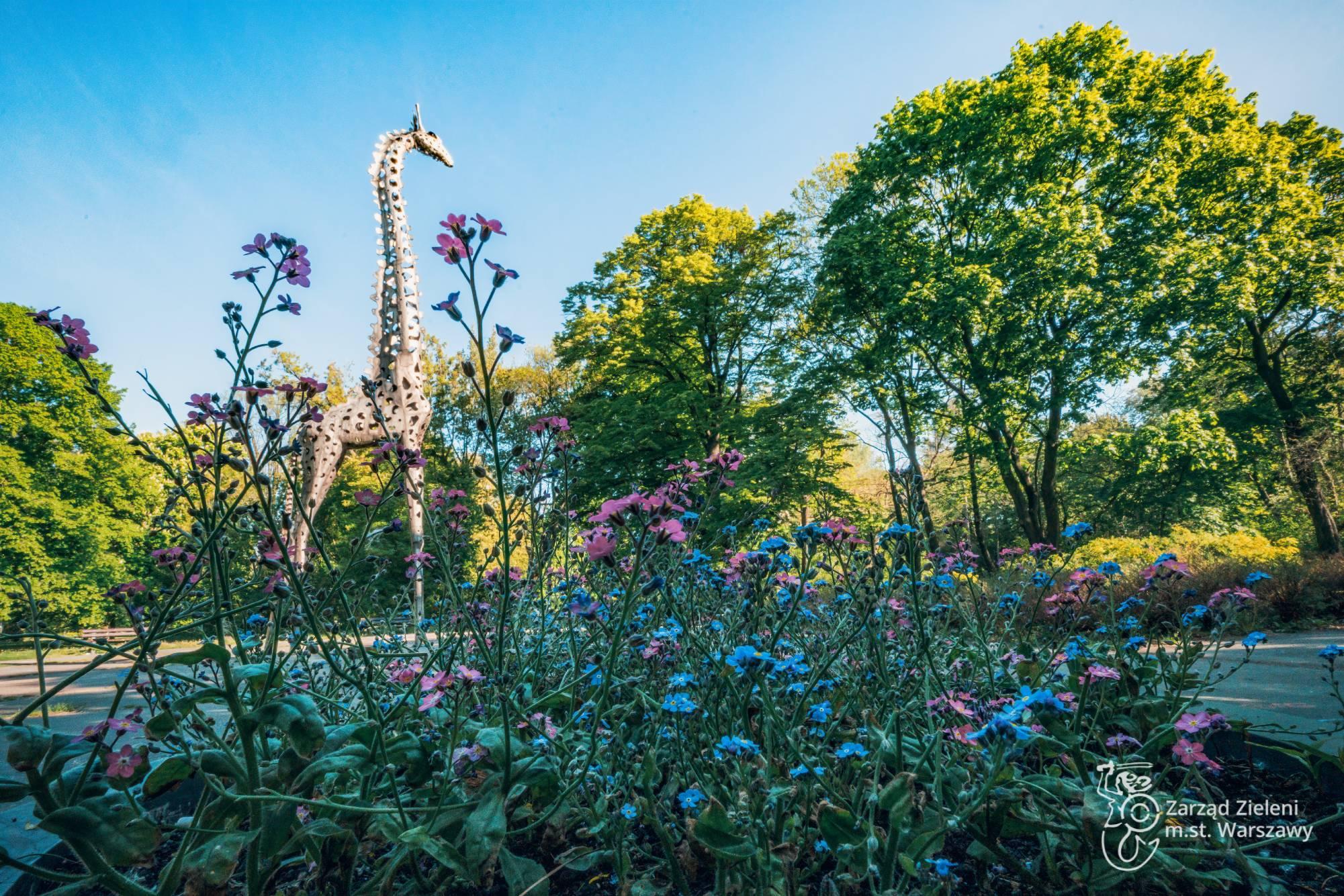 Donice z kwiatami i rzeźba żyrafy w Parku Praskim