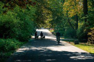 Aleja w Parku Praskim - spacerujący mieszkańcy i rowerzysta